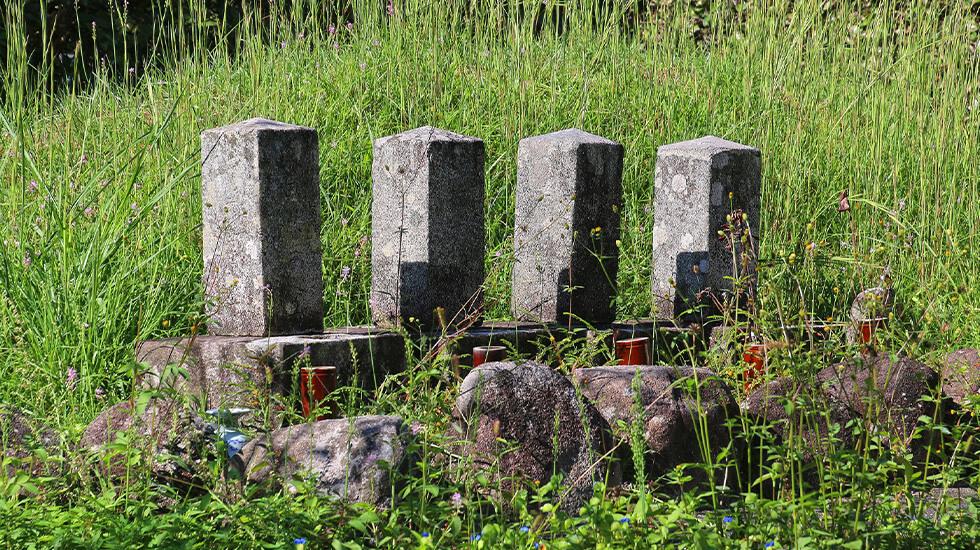 お墓の草木伐採・草刈り